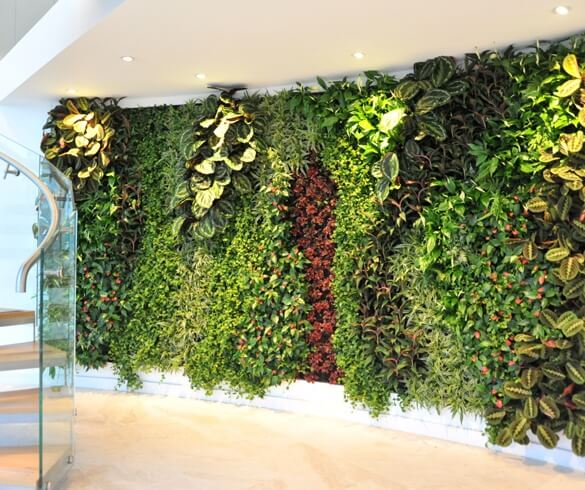 Big living wall in reception area biophillia biophilia