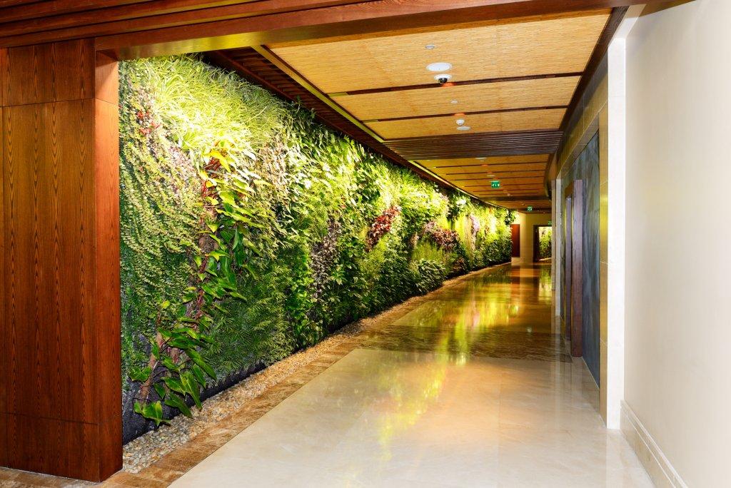 Beautiful living wall in corridor of building
