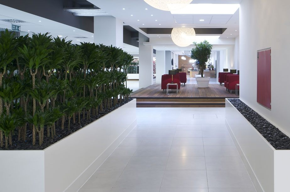 Office opening with communal area with red chairs and white coffee table, walkway is lined with a white wall with stone boarder on one side and trees in large planter on the other