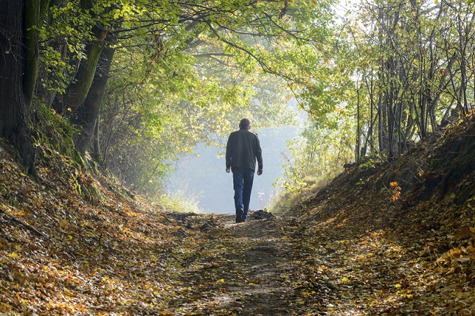 Man forest bathing, walking up a path with arched trees overhead, fallen leaves on the ground