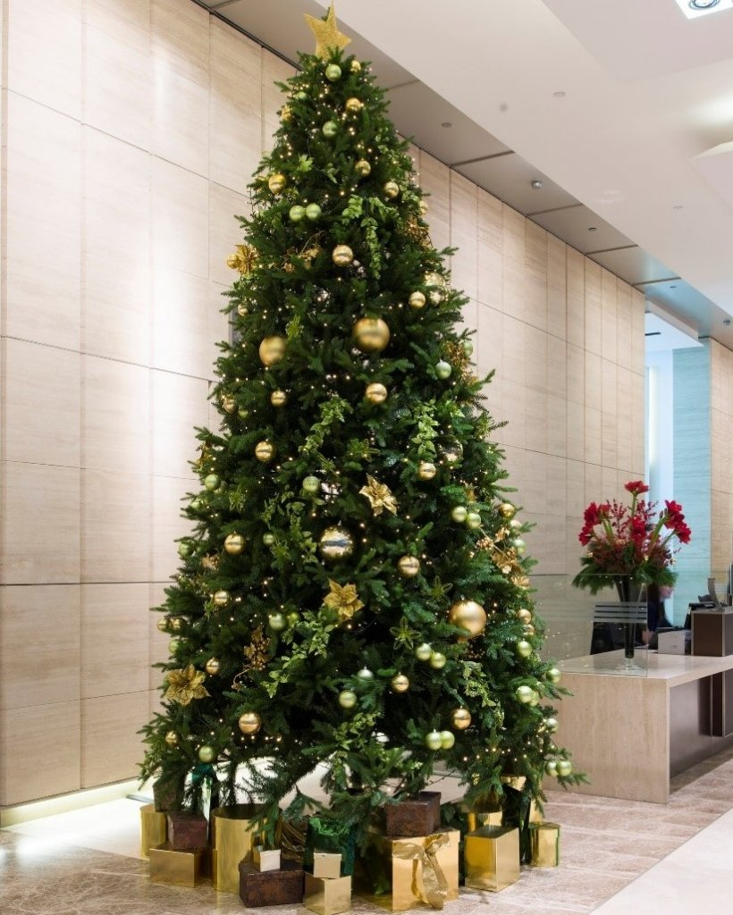 Large christmas tree in office next to reception desk. There are wrapped presents under the tree and a gold star atop.