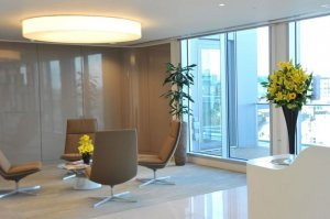 Plants adorning contemporary office waiting area