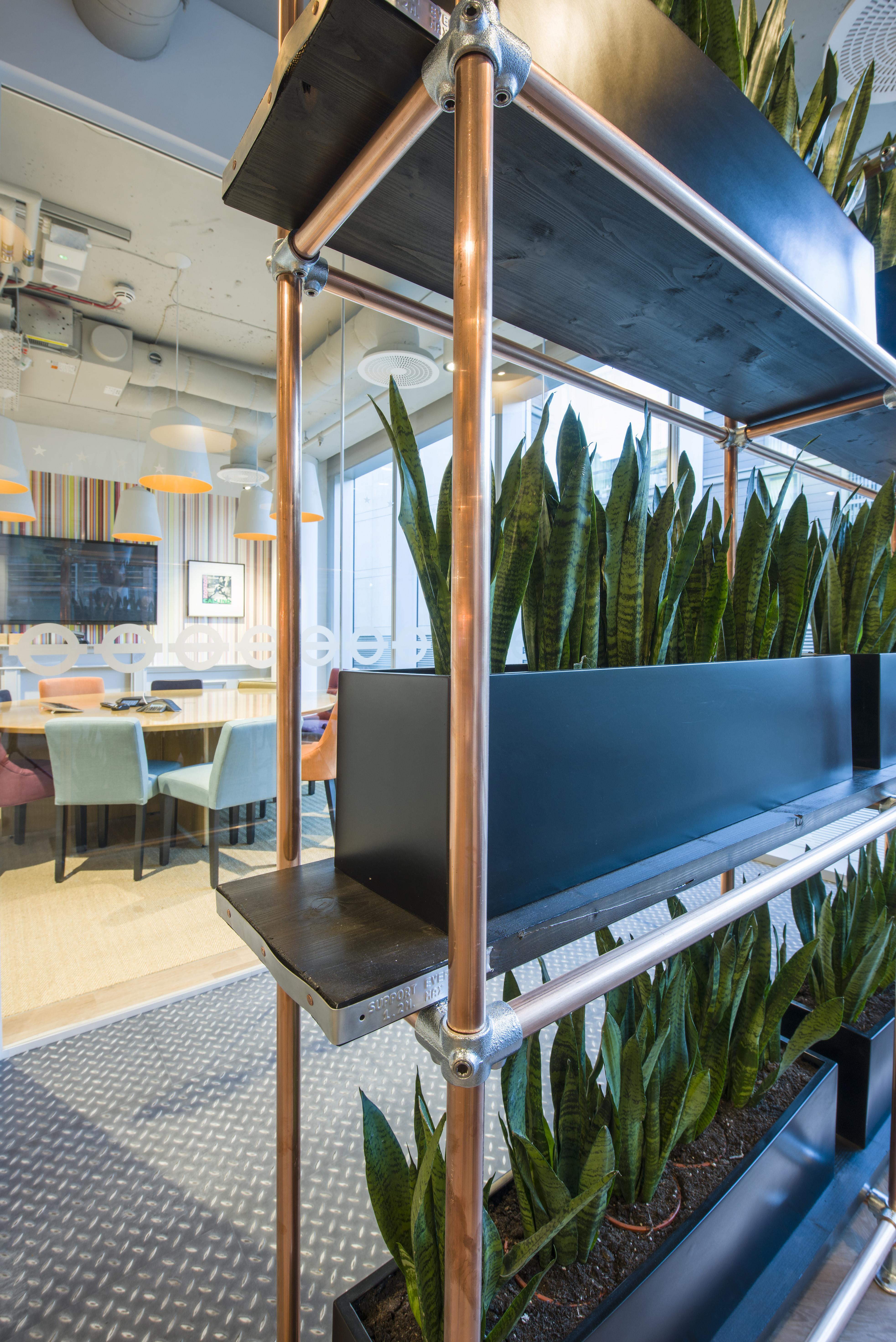 plants on shelves in office