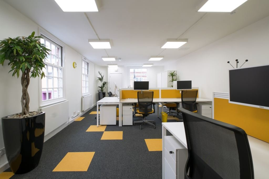 Open plant office with bright yellow desk dividers and tree style plants potted around the room edges