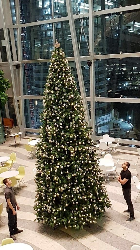 Planteria Group installed Christmas Tree within corporate office. The tree stands arround 20 ft tall, with two men either side looking up at the top of it