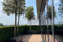 outside building with trees