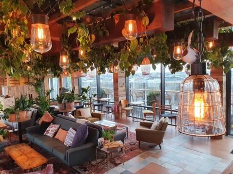 Planteria Urban Jungles