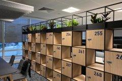 plants on top of storage lockers